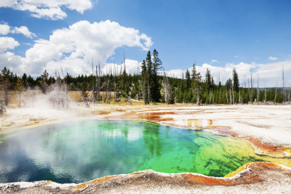 6 Camping Gear Rental Yellowstone & Jackson WY [Which is the Best?]