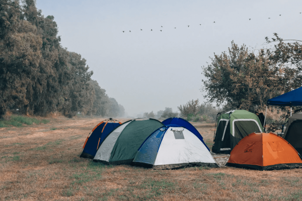 12 Best 4 Person Tents for Every Type of Camper