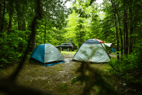 All About Walk Up Campgrounds – What Are They & 12  Tips to get One