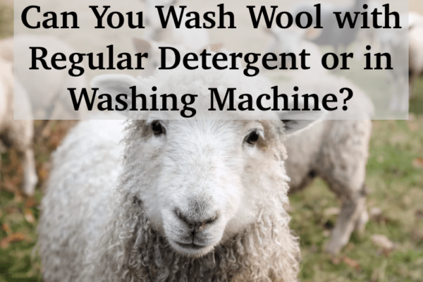 Can you Wash Wool with Regular Detergent or in a Washing Machine? 6 Tips for Protecting Wool